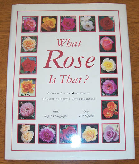 Image for What Rose is That?