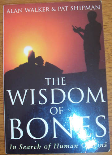 Image for Wisdom of Bones, The: In Search of Human Origins