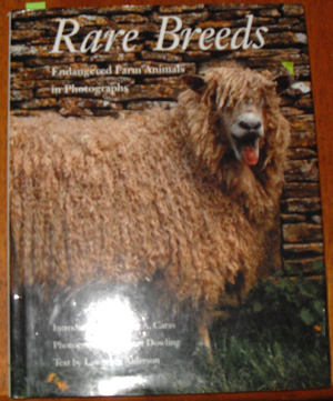 Image for Rare Breeds: Endangered Farm Animals in Photographs