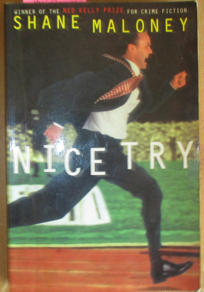 Image for Nice Try: A Murray Whelan Mystery