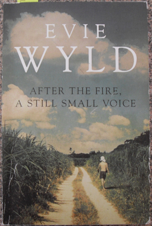 Image for After the Fire, A Still Small Voice (Uncorrected Bound Sample)