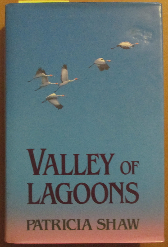 Image for Valley of Lagoons
