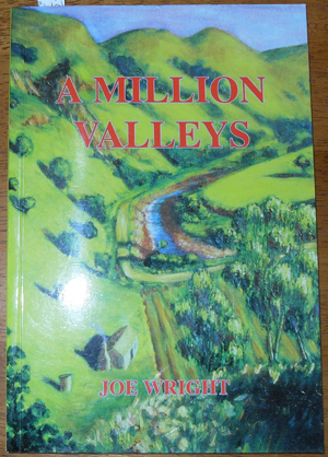 Image for Million Valleys, A
