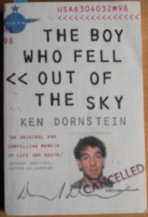 Image for Boy Who Fell Out of the Sky, The