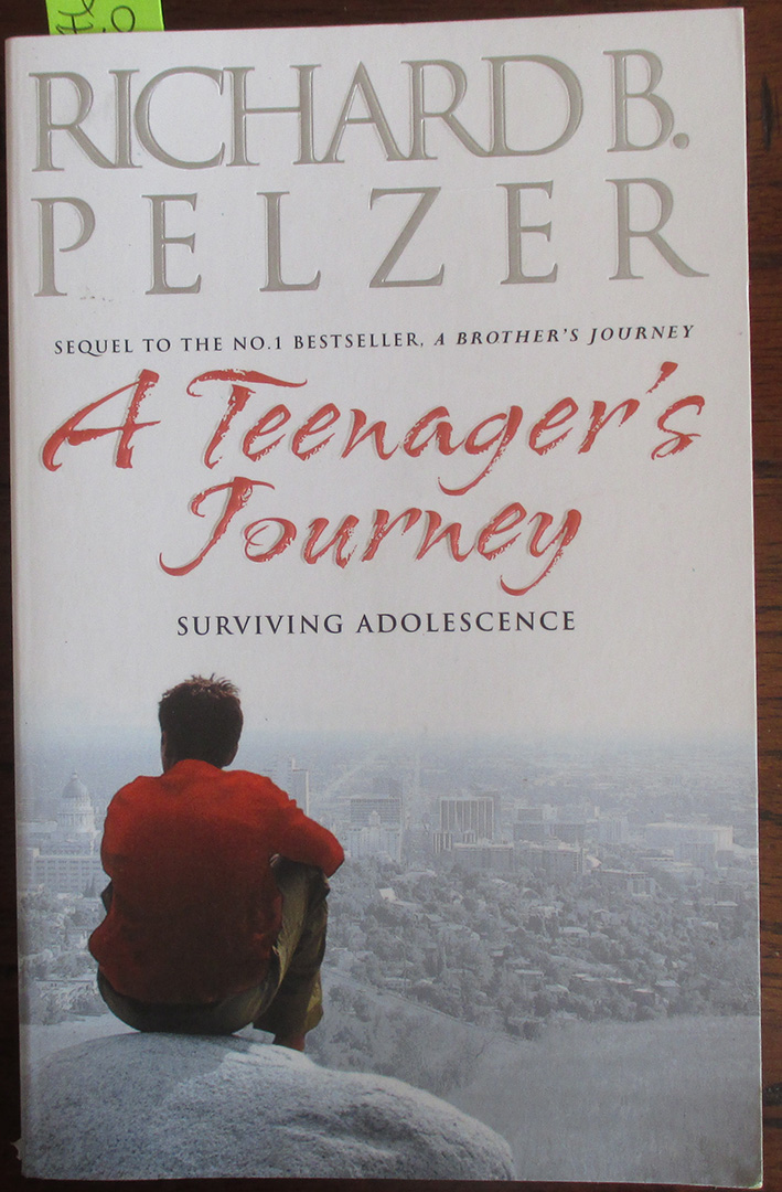 Image for Teenager's Journey, A: Surviving Adolescence