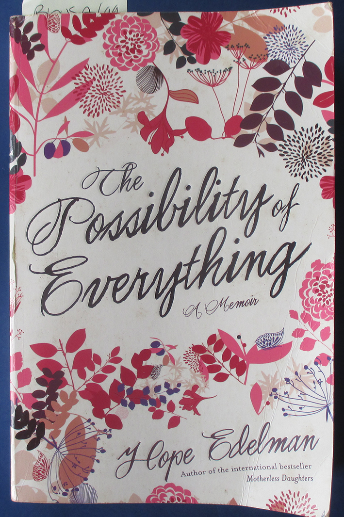 Image for Possibility of Everything, The: A Memoir