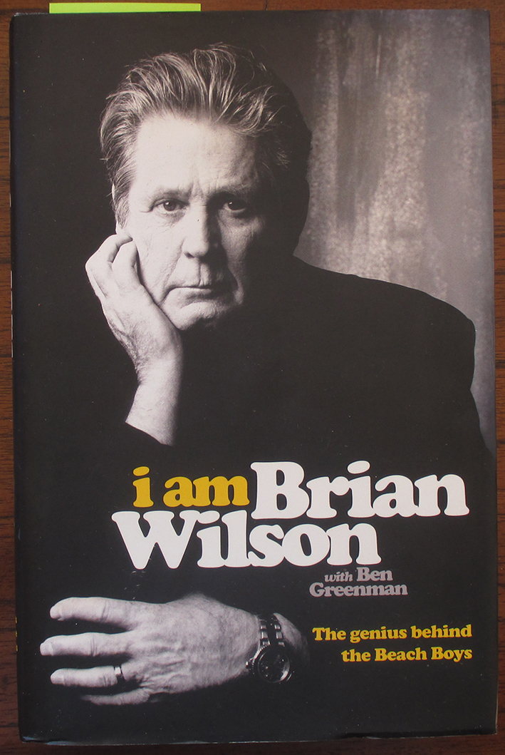 Image for I Am Brian Wilson: The Genius Behind the Beach Boys