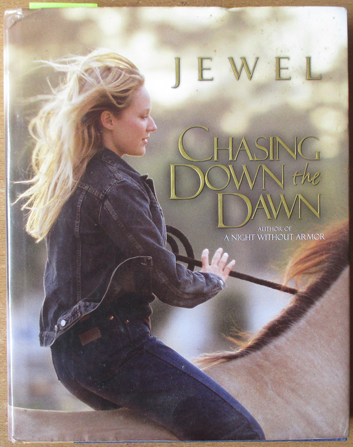 Image for Chasing Down the Dawn