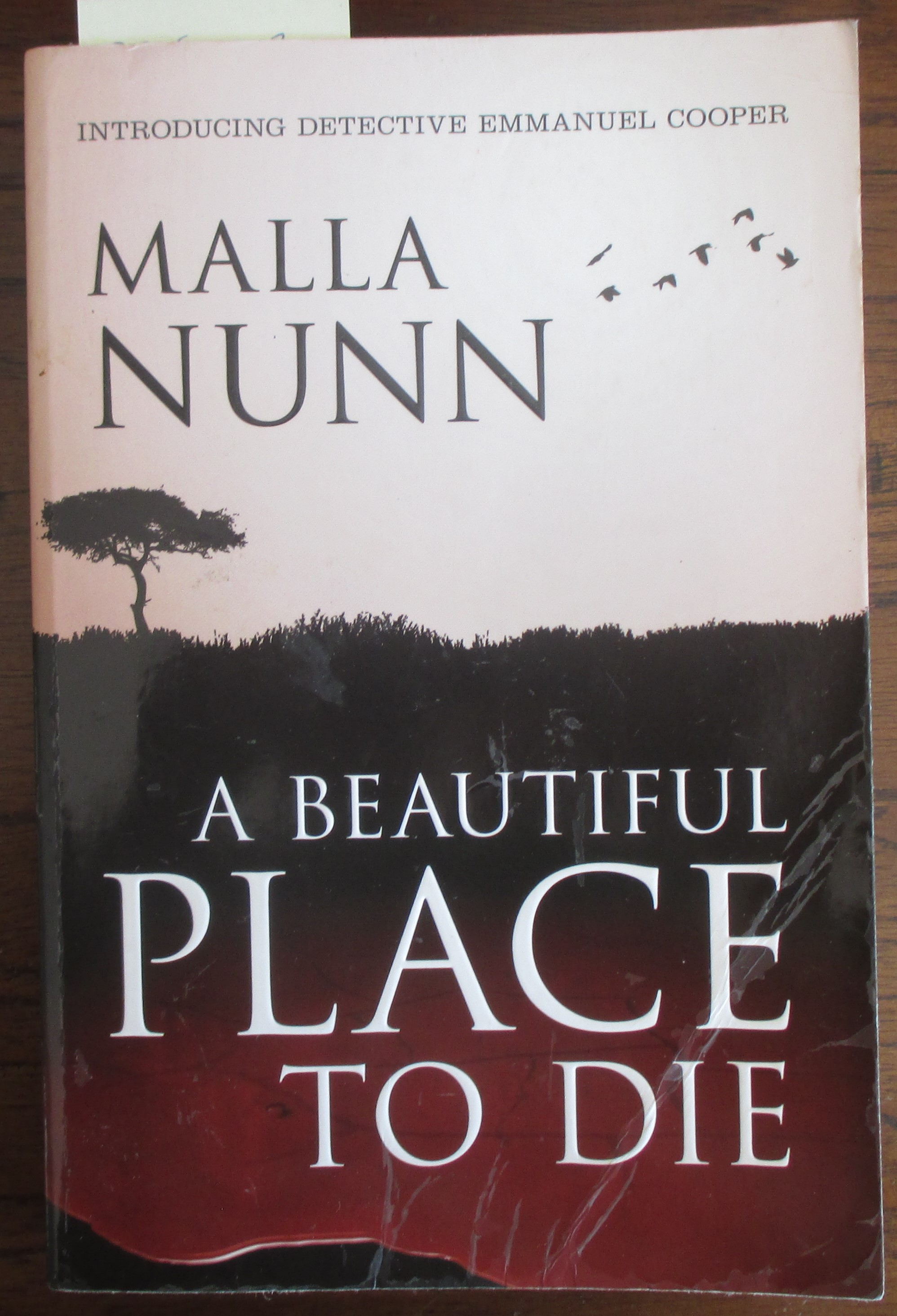 Image for Beautiful Place to Die, A