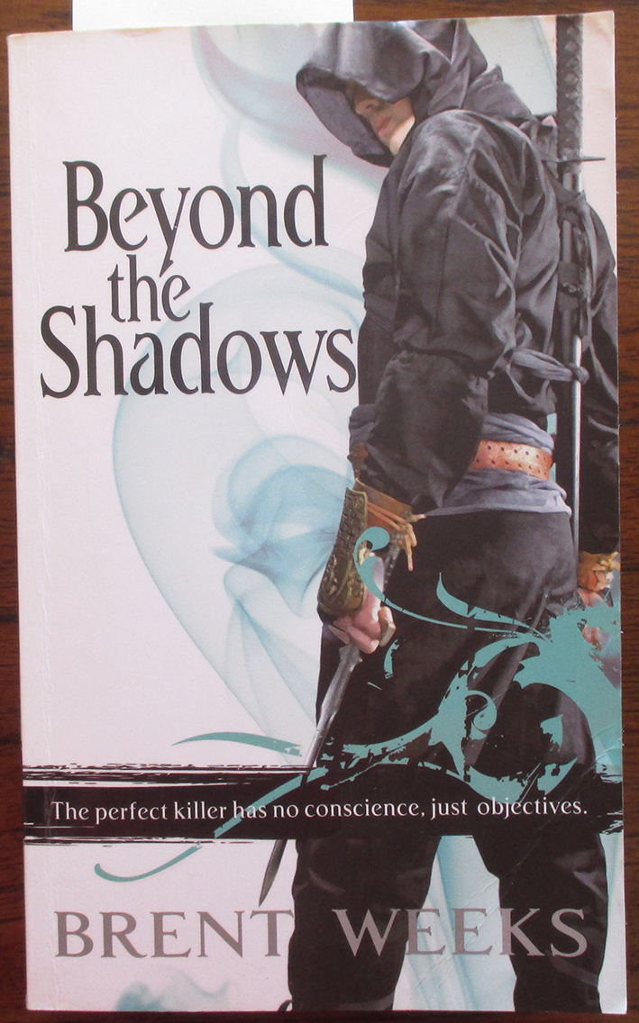 Image for Beyond the Shadows: The Night Angel Trilogy (#3)