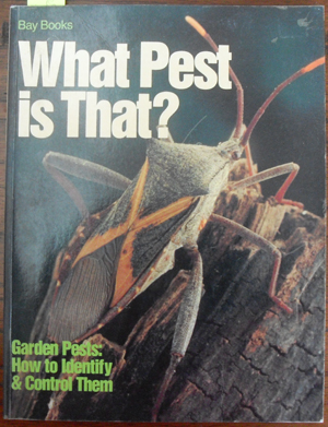 Image for What Pest is That? - Garden Pests: How to Identify & Control Them