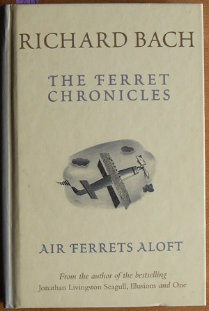 Image for Ferret Chronicles, The: Air Ferrets Aloft
