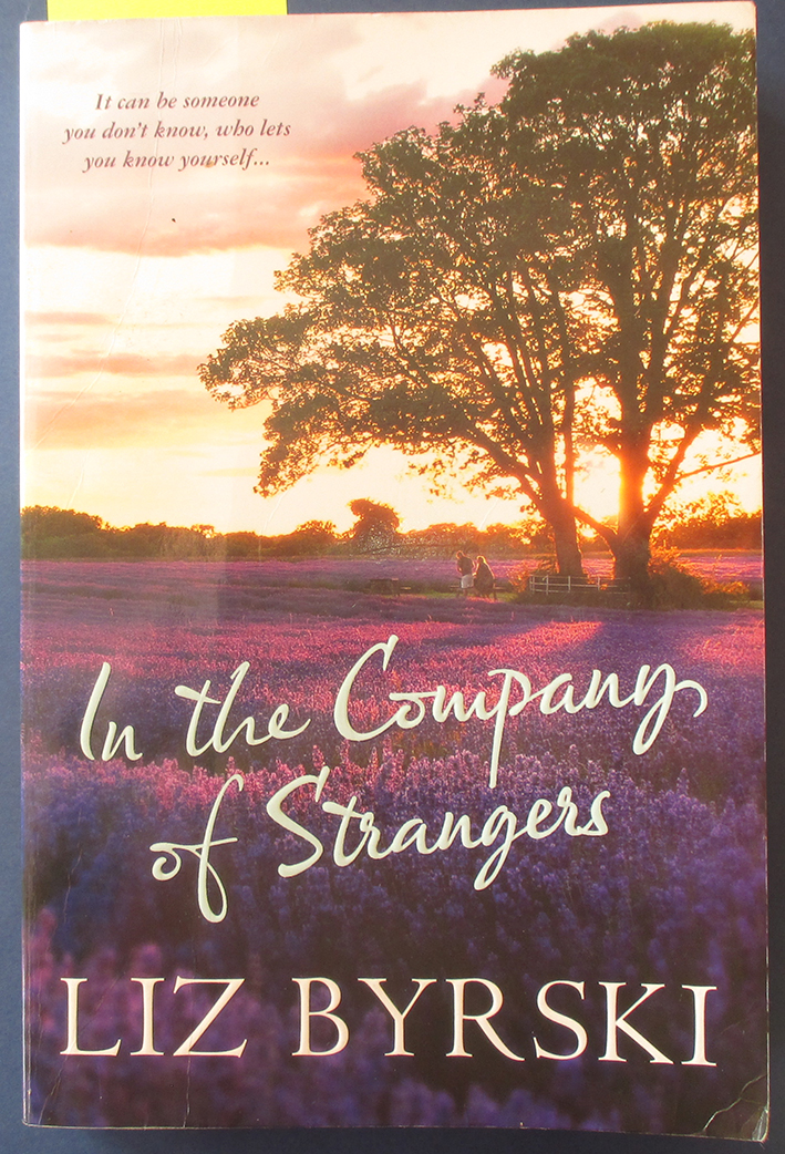 Image for In the Company of Strangers