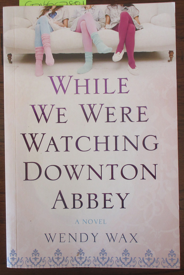 Image for While We Were Watching Downton Abbey: A Novel