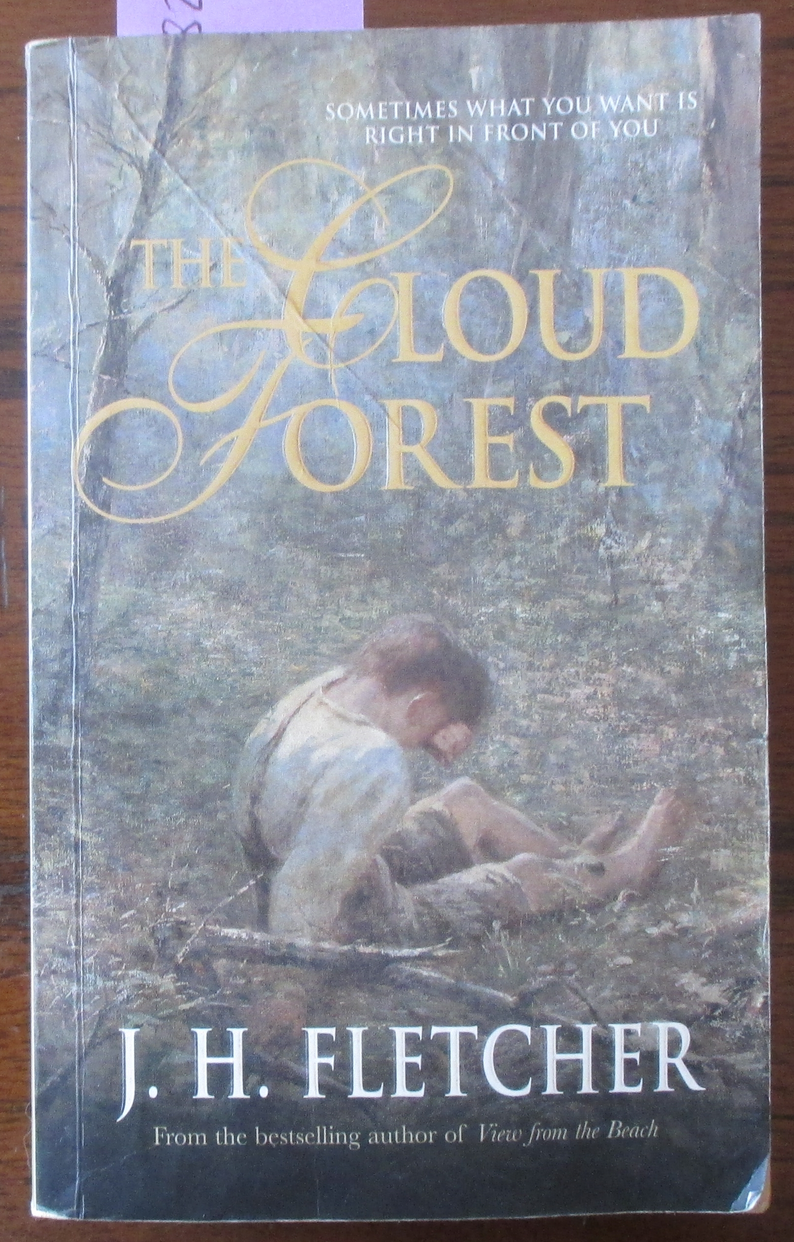 Image for Cloud Forest, The
