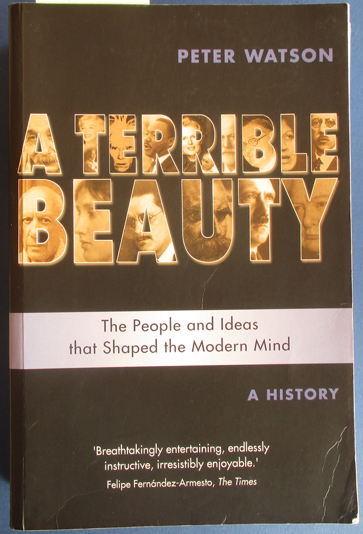 Image for Terrible Beauty, A: The People and Ideas That Shaped the Modern Mind - A History