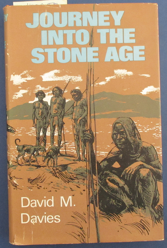 Image for Journey Into the Stone Age