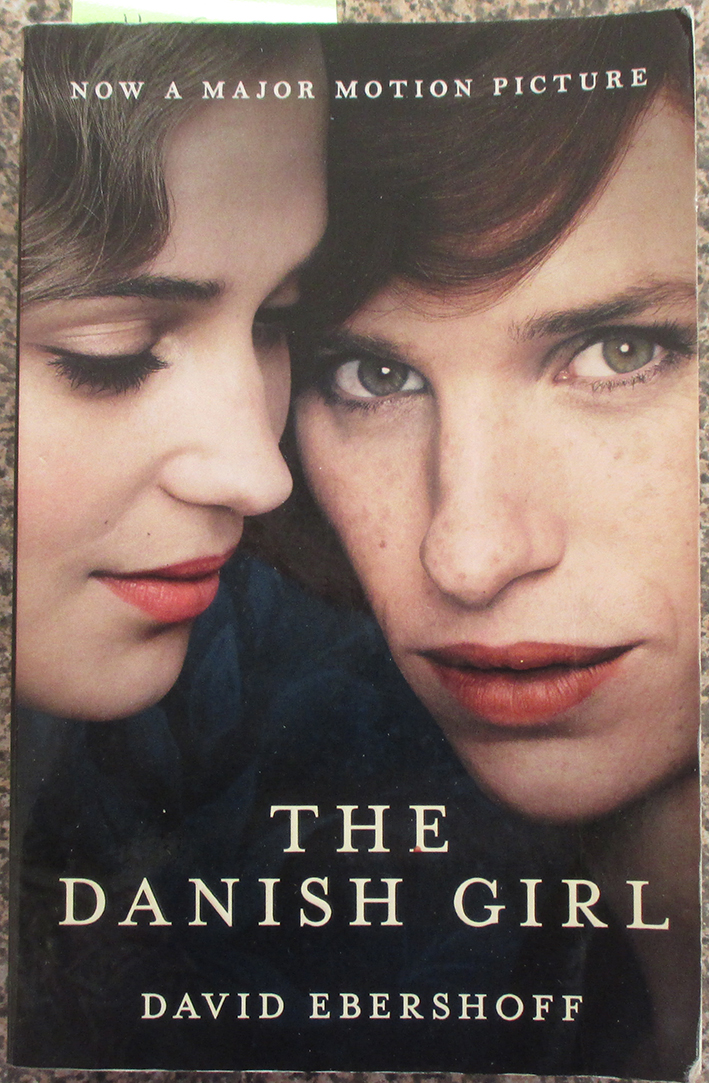 Image for Danish Girl, The