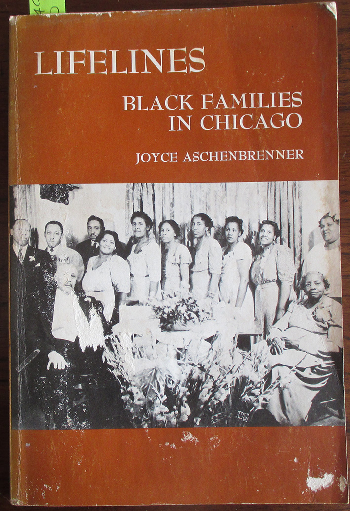Image for Lifelines: Black Families in Chicago (Case Studies in Cultural Anthropology)