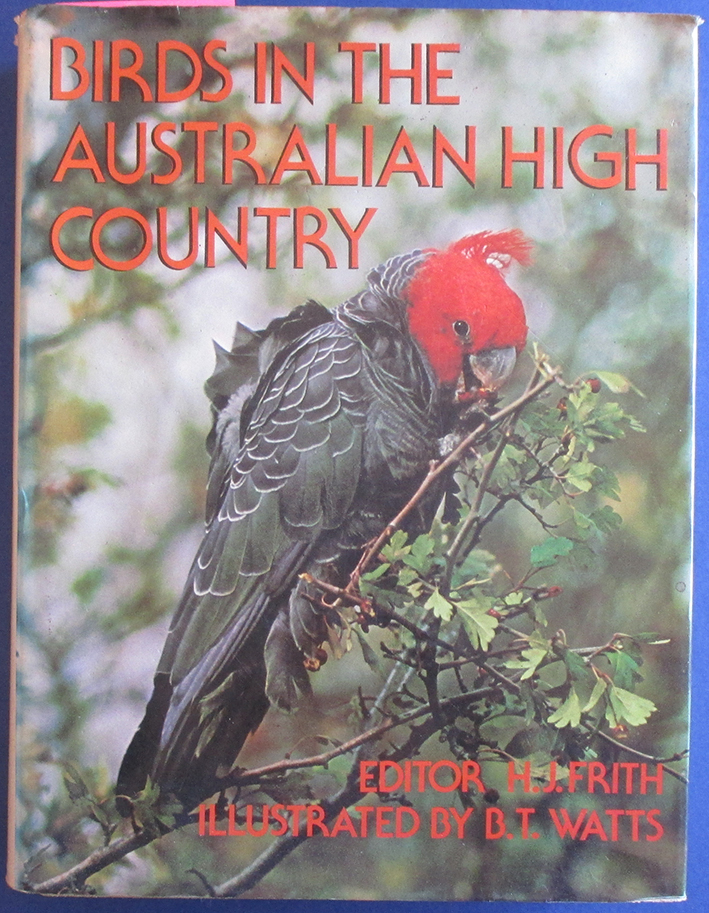 Image for Birds in the Australian High Country
