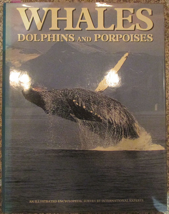 Image for Whales, Dolphins and Porpoises