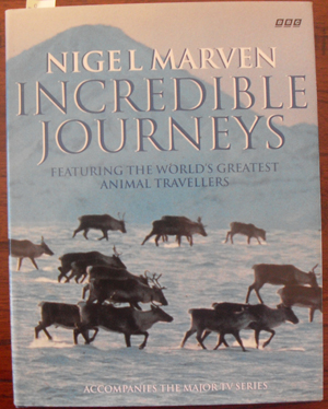 Image for Incredible Journeys: Featuring the World's Greatest Animal Travellers