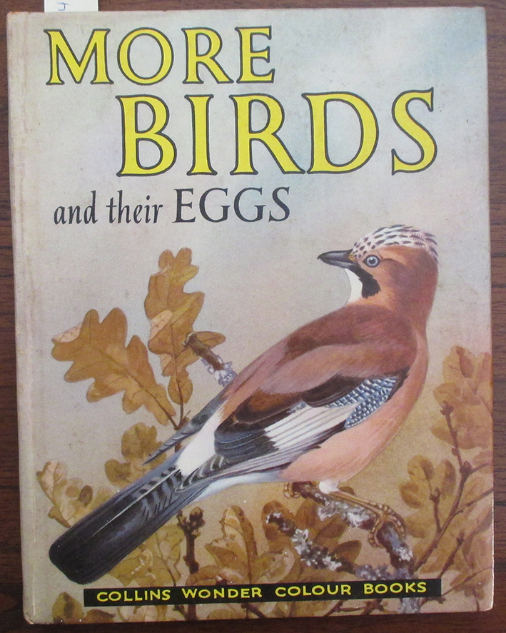 Image for More Birds and Their Eggs