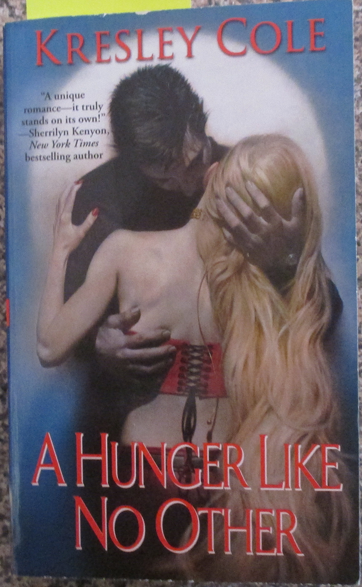 Image for Hunger Like No Other, A: The Immortal After Dark Series