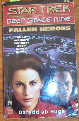 Image for Star Trek: Deep Space Nine; Fallen Heroes
