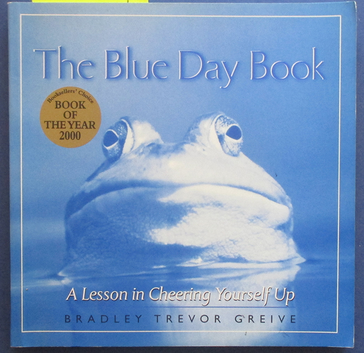 Image for Blue Day Book, The: A Lesson In Cheering Yourself Up