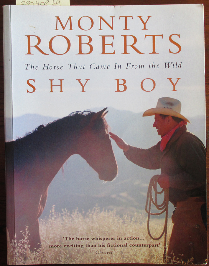 Image for Shy Boy: The Horse That Came in From the World