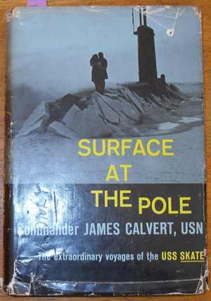 Image for Surface at the Pole