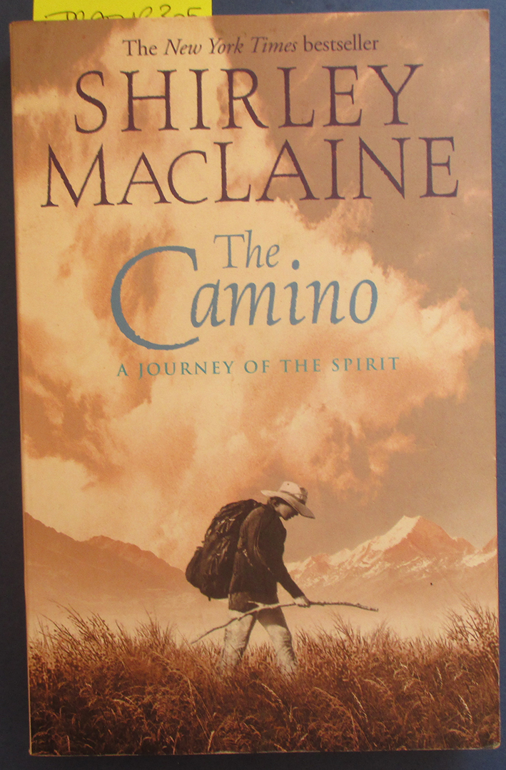 Image for Camino, The: A Journey of the Spirit
