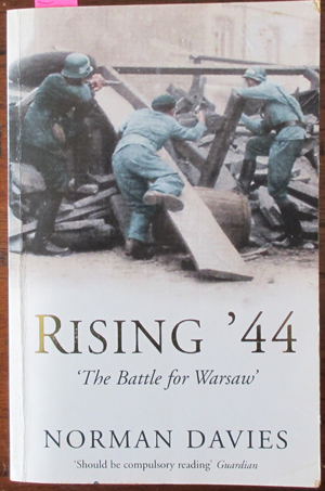 Image for Rising '44: The Battle for Warsaw